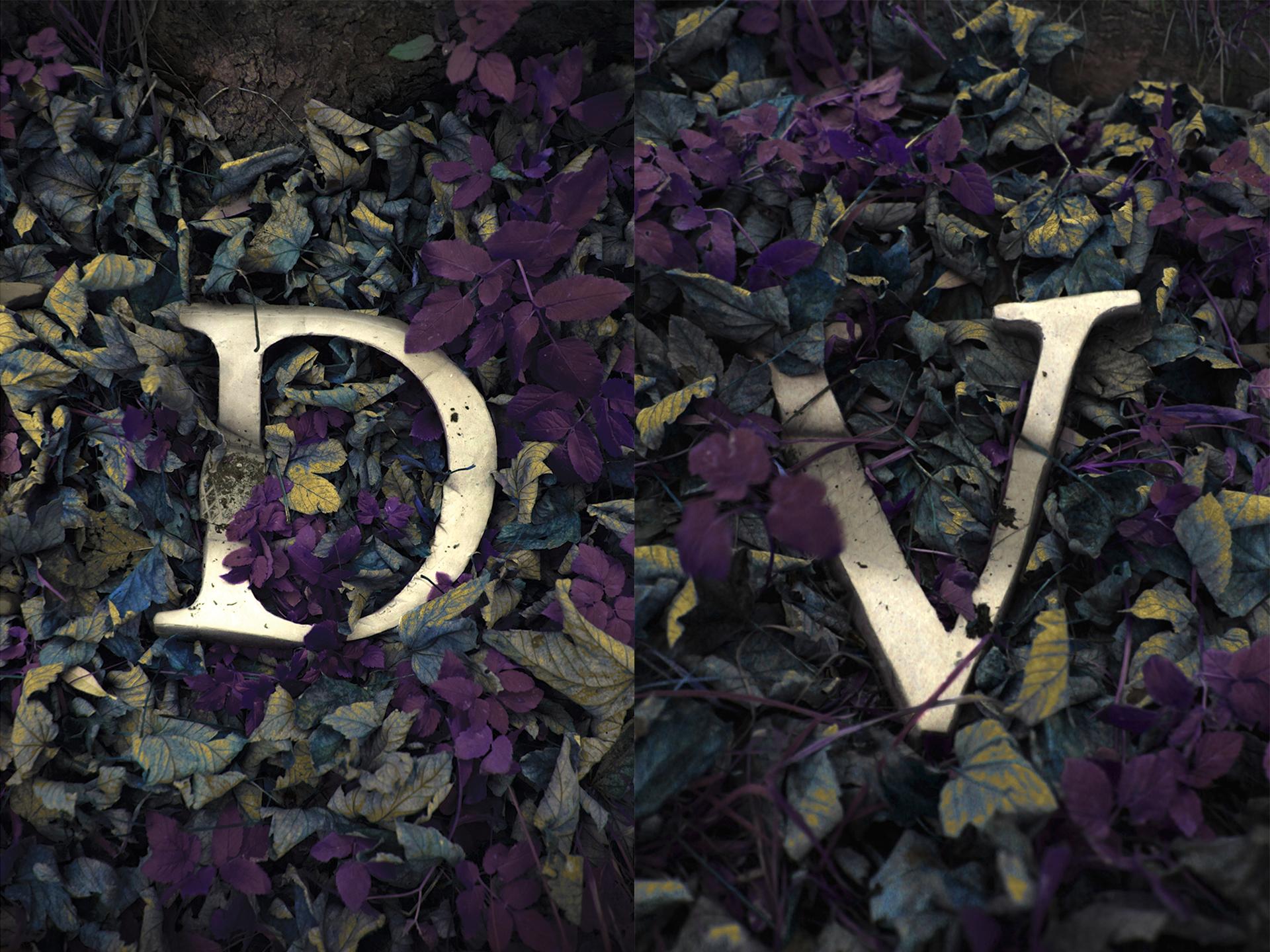 Vivid D-V
